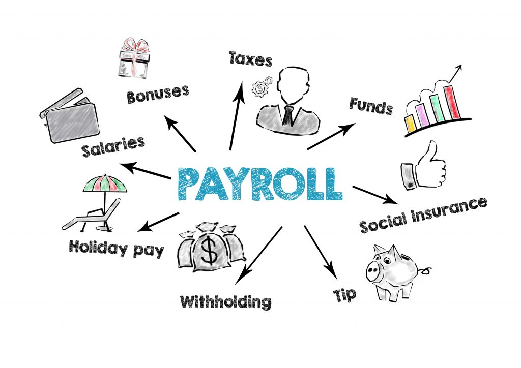 many payroll details